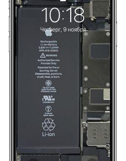 Айфон 11 в разобранном виде