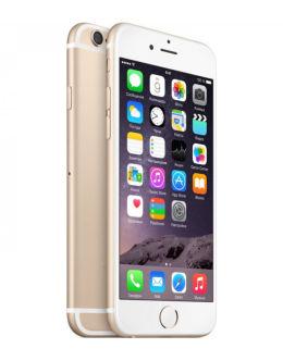 Фото iPhone 6 Плюс в золотом цвете (gold)